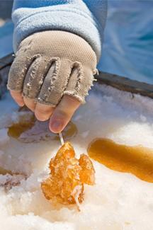 Planifier votre saison des sucres!