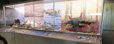 Exposition de la Fédération québécoise des chasseurs et pêcheurs