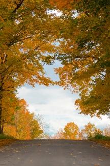 Une région riche en découvertes cette automne!