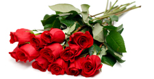 Valentine's Day Package offered in the province of Quebec in february 2016